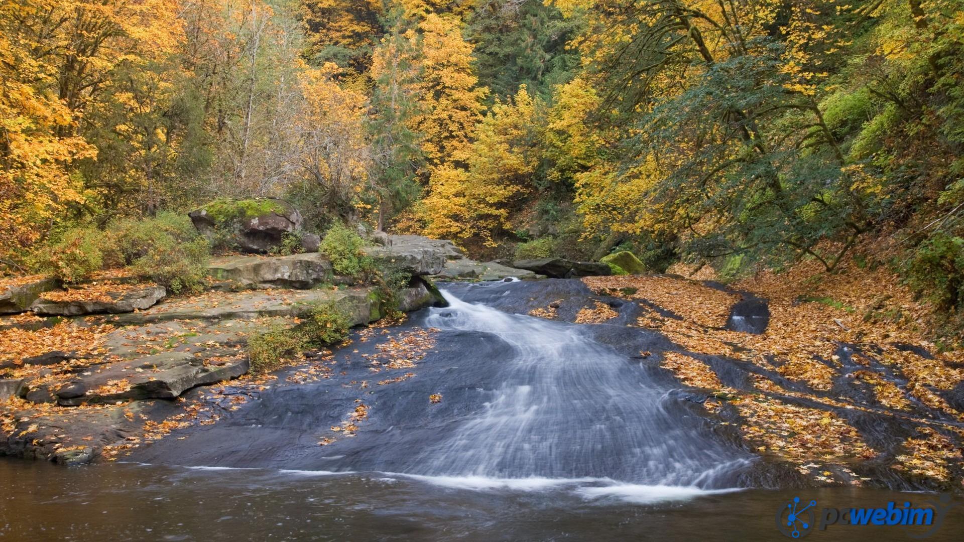 USA; Oregon; Lake Creek; fall color- Credit as: Don Paulson, www.donpaulson.com