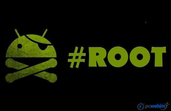 Root nedir